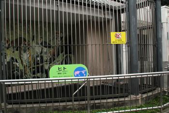 日本平動物園4