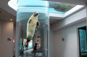 日本平動物園6