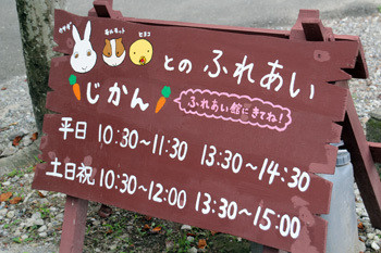 日本平動物園17