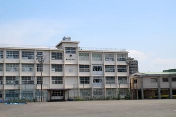 新通小学校4
