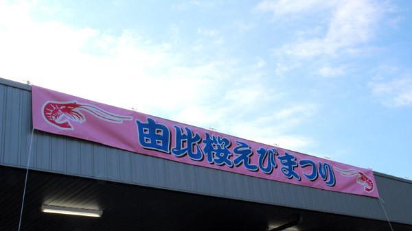 桜えびまつり1-1